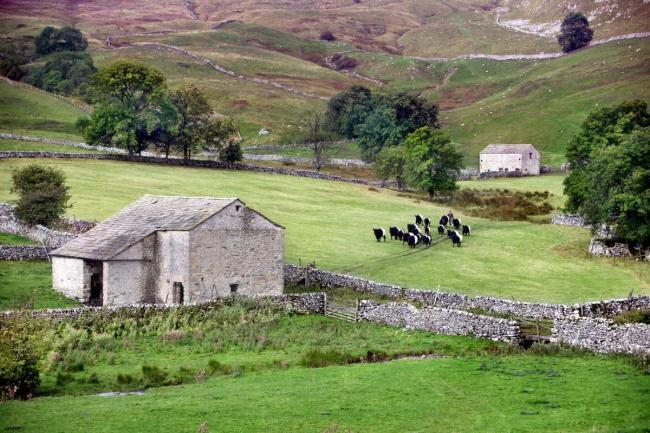 A farm in the Yorkshire Dales: farmers need clear and urgent support, says the NFU