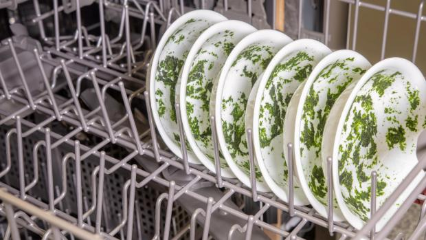 Craven Herald: It's hard for your dishwasher to remove dried-on food—and spinach is the worst. If you can't run a full normal cycle right away, at least start a rinse cycle. Credit: Reviewed / Jonathan Chan