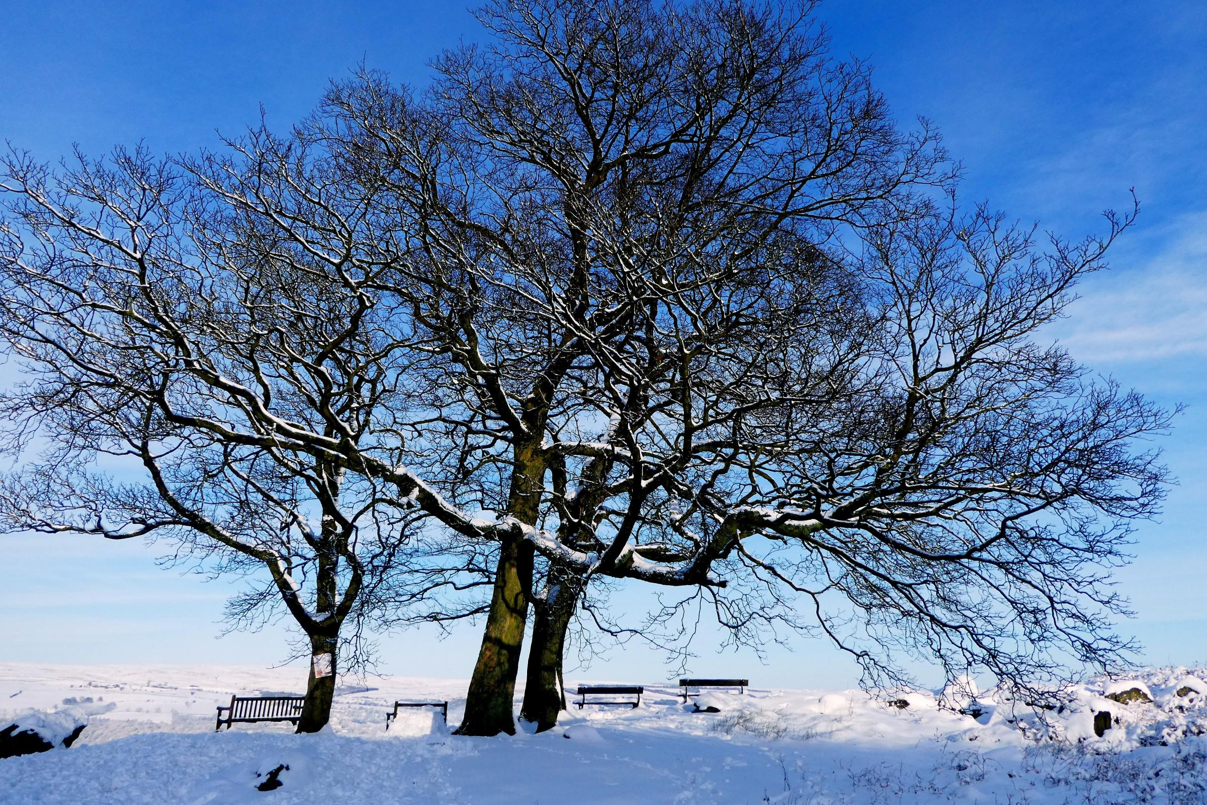 As the district braces for more snow readers share their winter photos