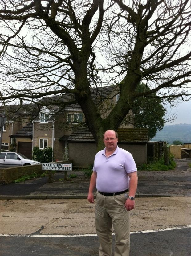 Coun Adrian Naylor and the tree