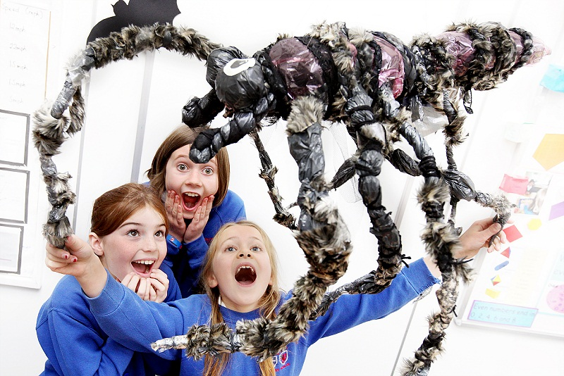 Molly Whitehead, Sophie Evans and Mary Allen get to grips with the giant spider in their maths lesso