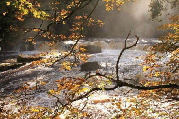Tony Fyfield's winning picture of Aysgarth in autumn