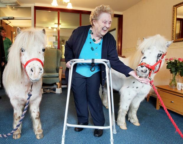 June Mulligan feeds Spot and Alfie at Neville House residential home in Gargrave