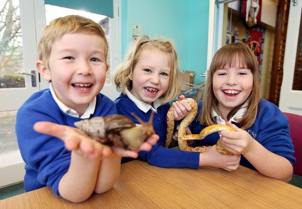 Bradley Primary School pupils Josh McParland, Lola Carr and Lily Bell take part in a Zoolab workshop