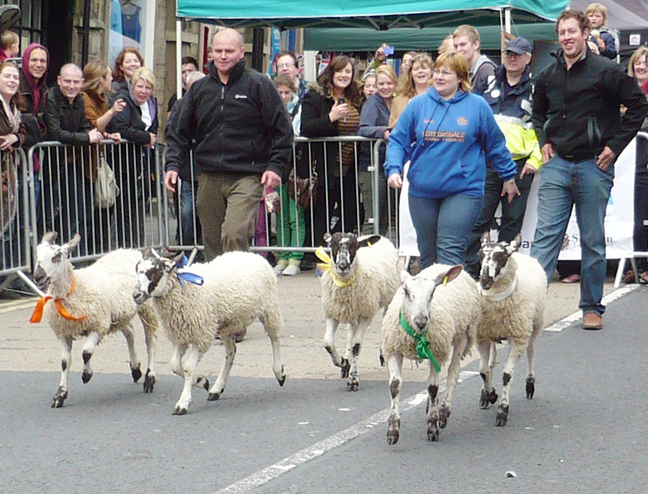 Skipton's Sheep Day will not take place this year