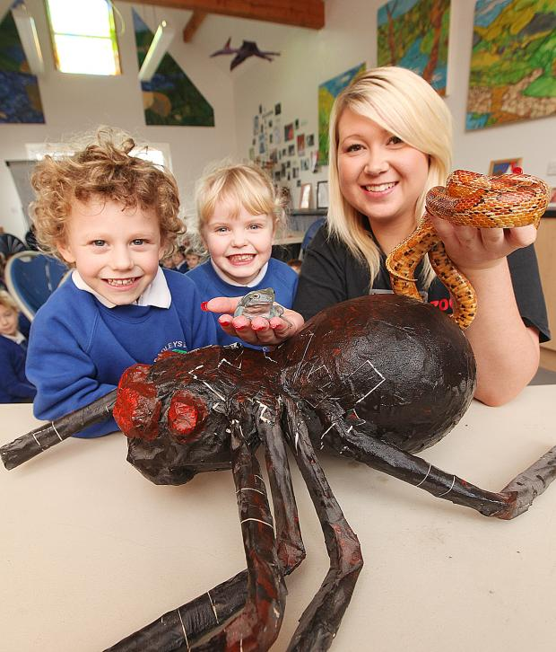 Craven Herald: Bradley Primary School pupils Harry Dobson and Isabella Wright with Caz Grundy from Zoolab viewing a corn snake and Australian tree frog