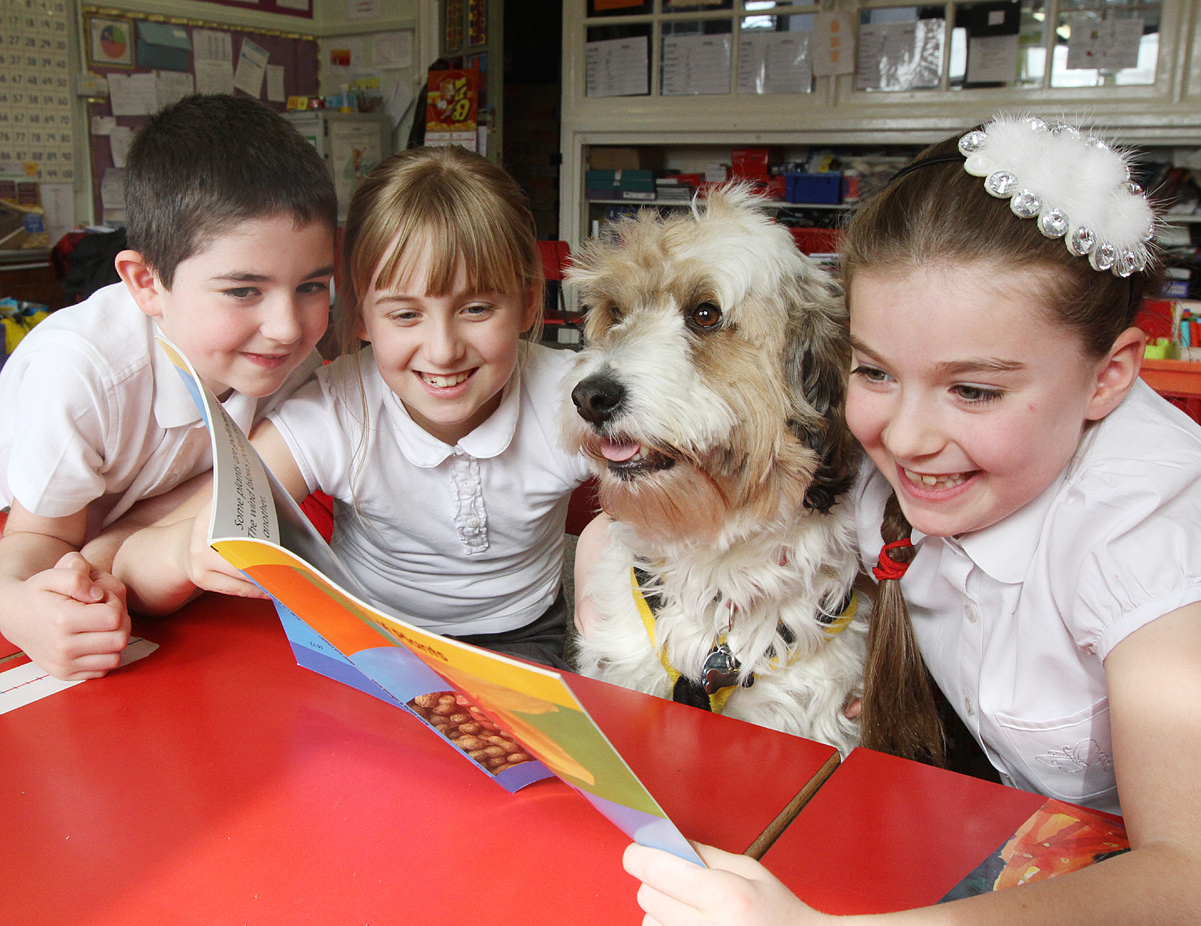 A GOOD TAIL: Parish Church School pupils in Skipton enjoy a visit from of the Dogs Trust. Pictured are Ellis Harker, Leah Stead, Oscar and Elizabeth Young