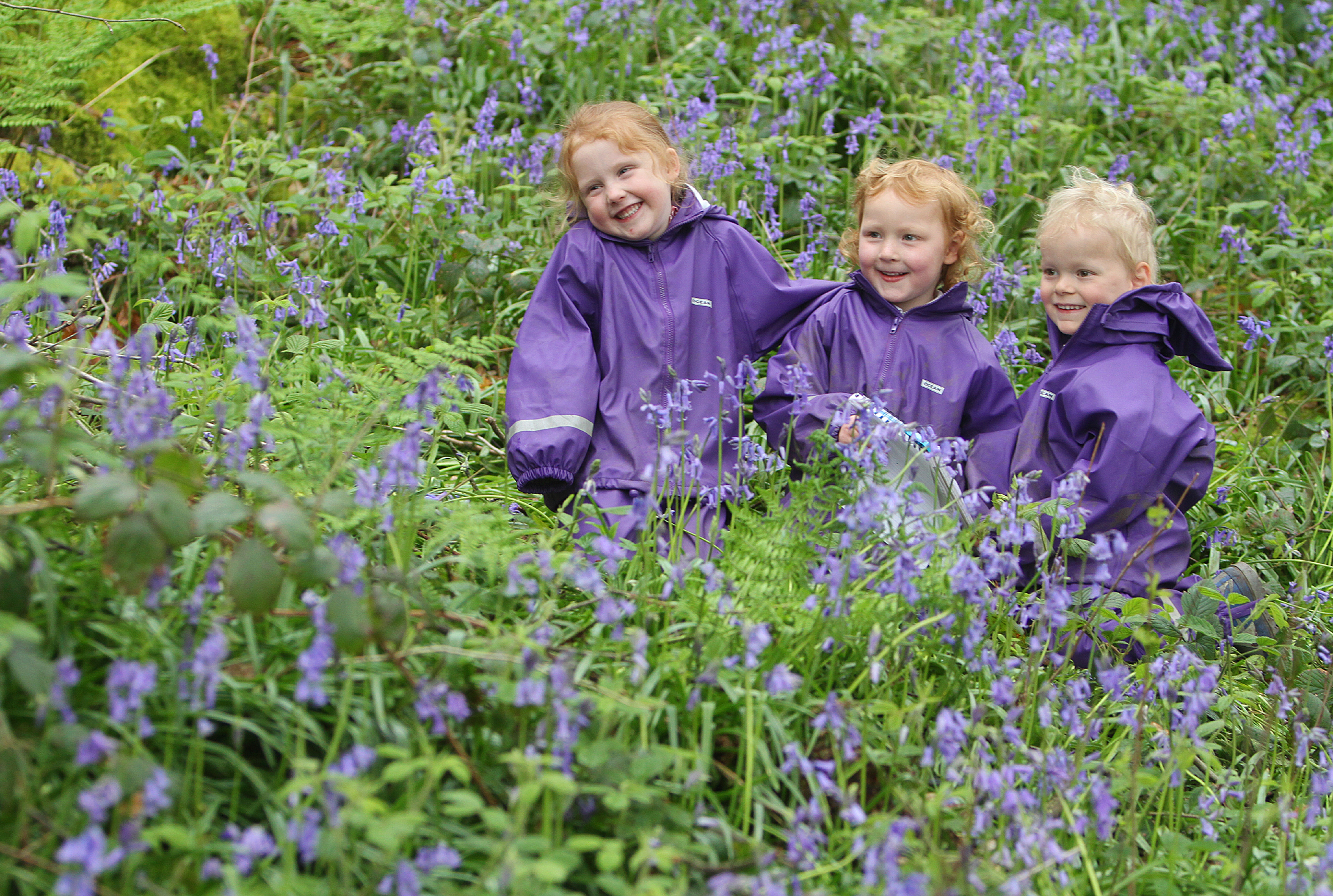 Lottie Oliver, Mabel Whitaker and Ted Hargreaves are surrounded by bluebells in the wooded area at Giggleswick Junior School