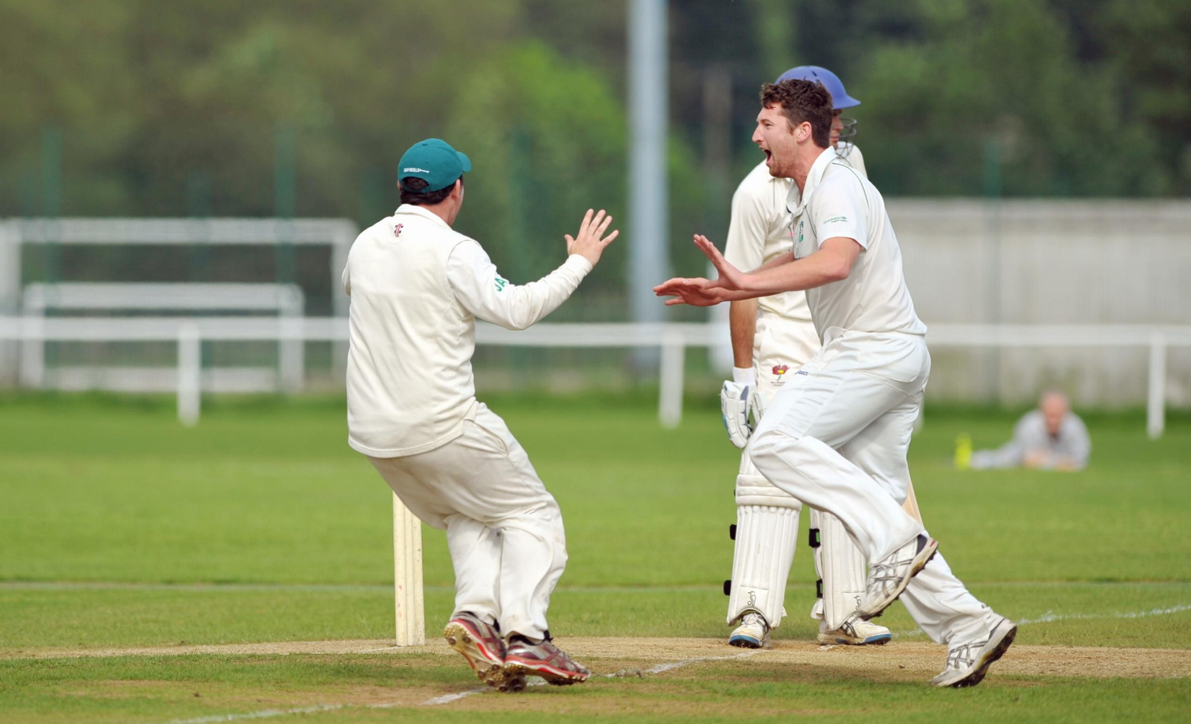 TOP DOGS: James Wilcock celebrates a wicket for Otley – the only unbeaten team in Division One – against Ben Rhydding