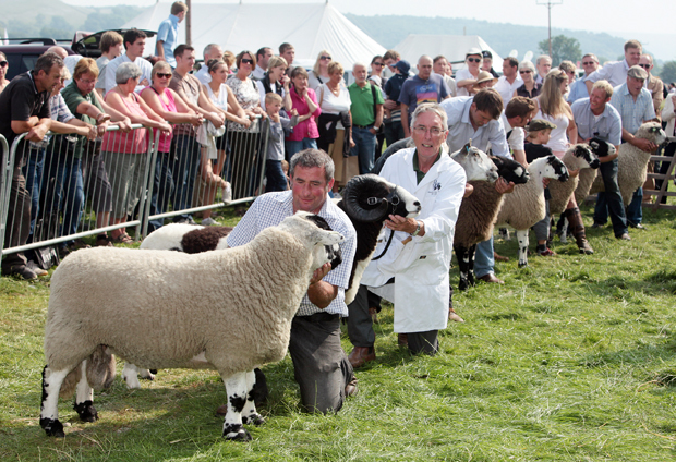 Craven Herald: KILNSEY SHOW EVENTS GUIDE FORM