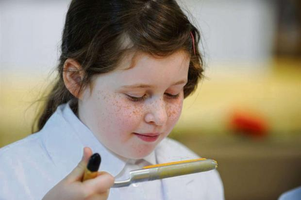 Nine-year-old Hannah Sykes taste cheese at the 2013 Great Yorkshire Show