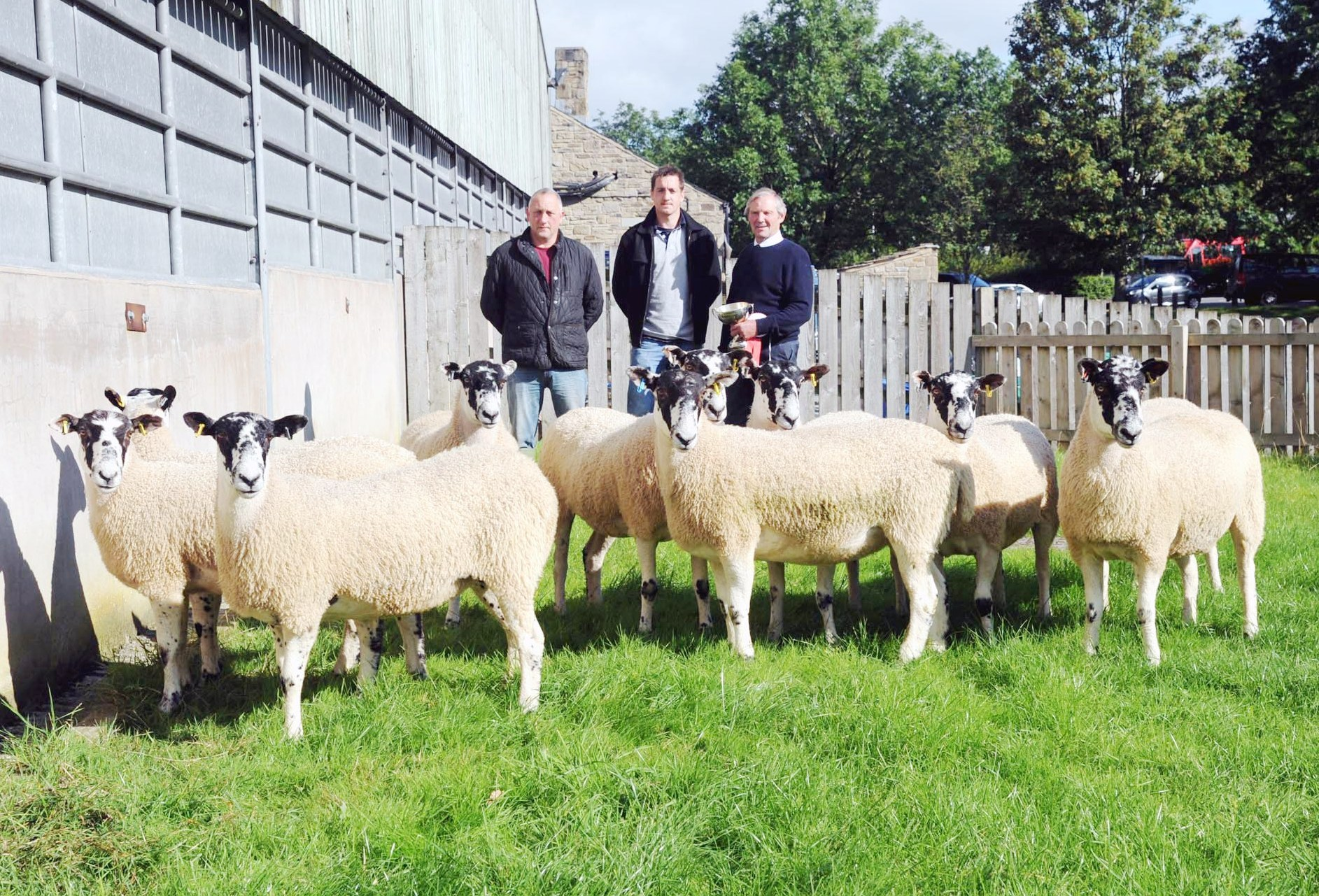 John Greenhalgh, right, with his champion pen of Mule gimmer shearlings, joined by co-judges Andrew Ogden, left, and Warwick Gill, who purchased the victors.