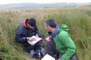 Map reading in the Dales