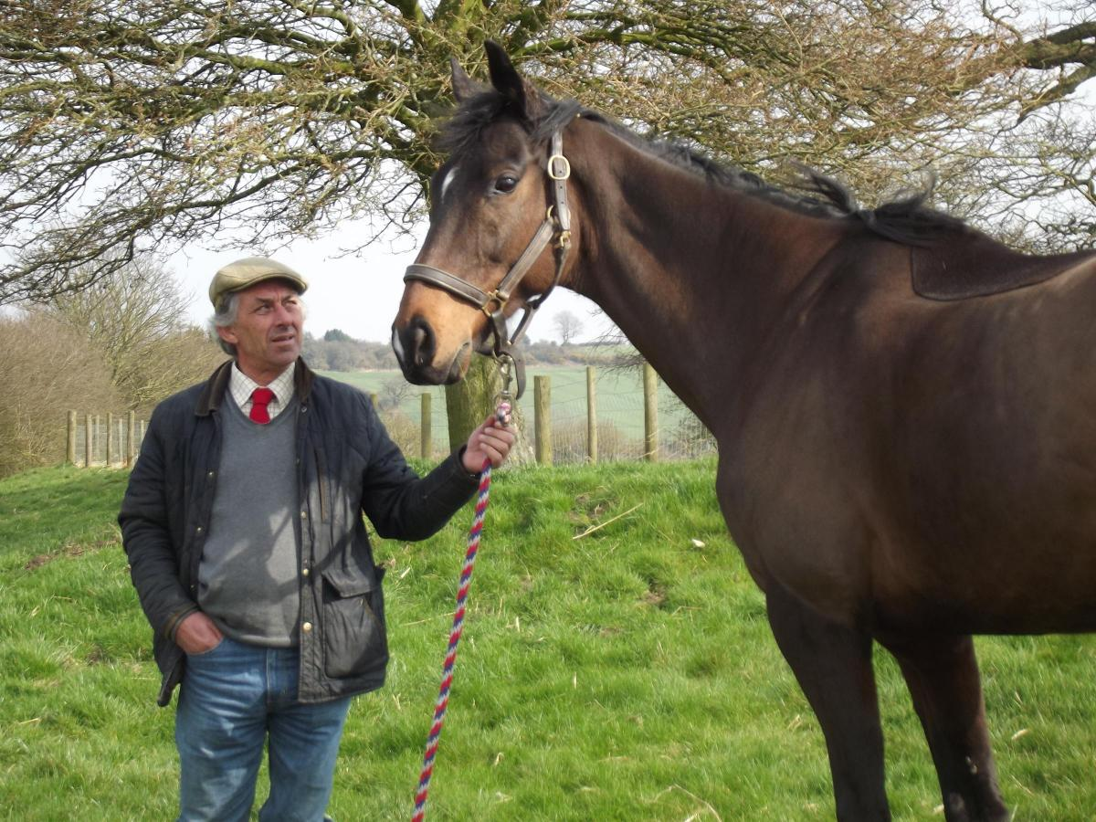The man who communicates with horses | Craven Herald