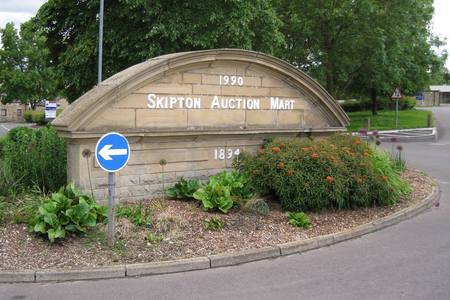 Latest Skipton Auction Mart round up