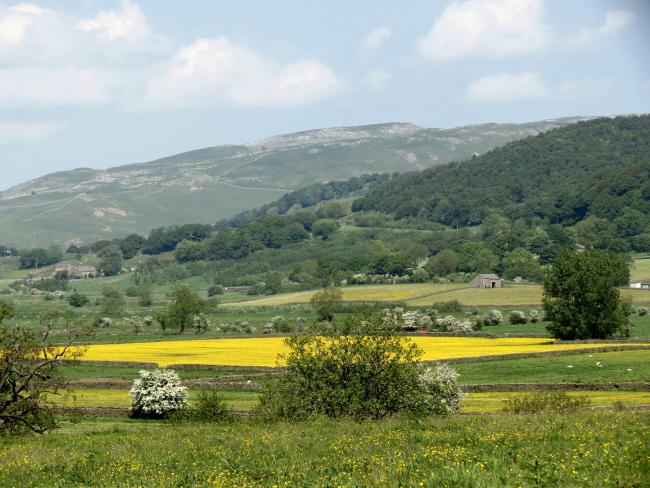 Looking towards Settle from one of the fields on Cappleside Farm, Rathmell. Picture by Elizabeth Robertshaw