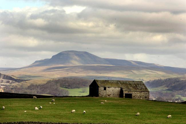 Barns in the Yorkshire Dales ..