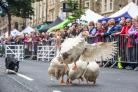 Skipton Sheep Day, picture Skipton Town Council
