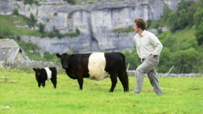Neil Heseltine with his belted Galloways
