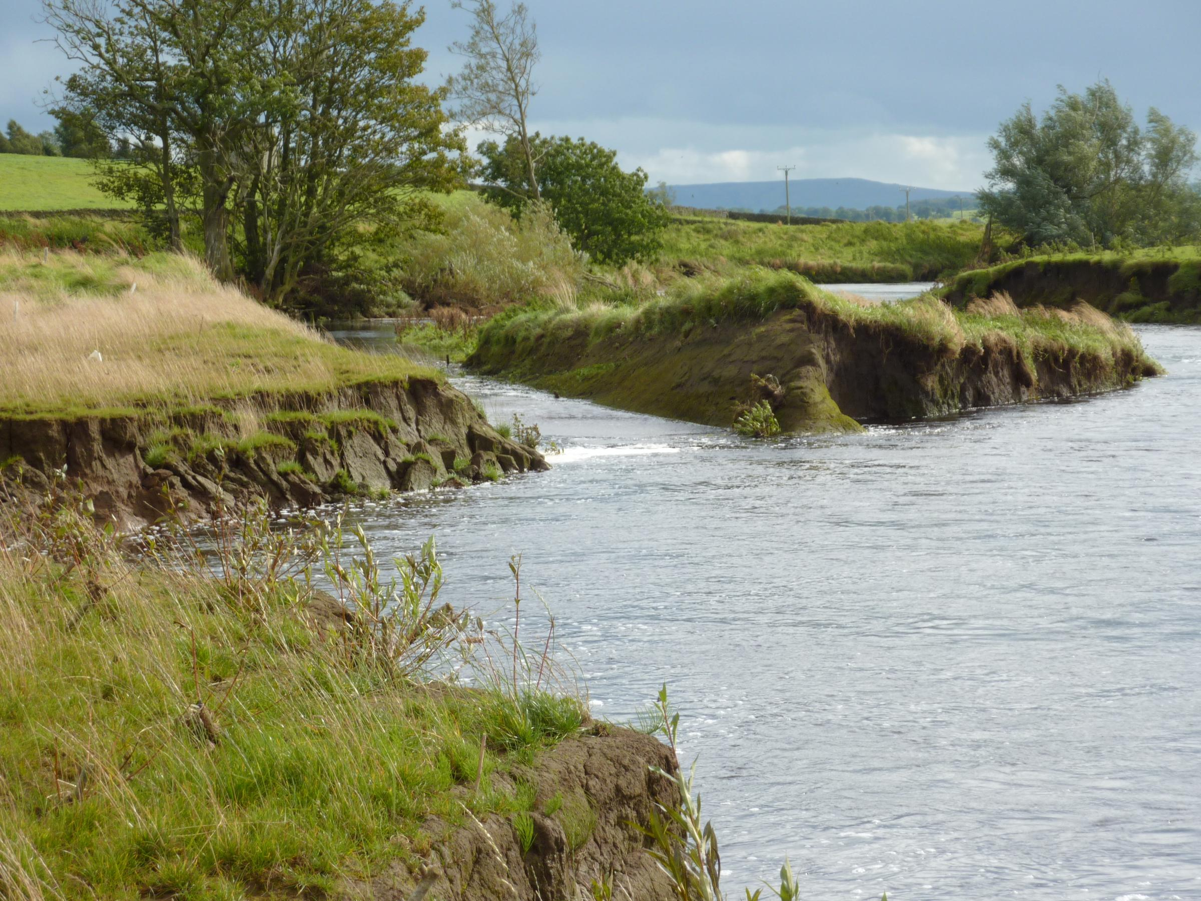 River Ribble, near Long Preston