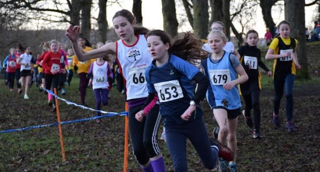Action from the year six girls' race at the Bradford Schools Cross-Country Finals. Picture: Dave Woodhead